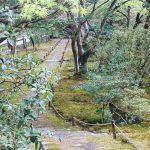 sentier temple des mousses
