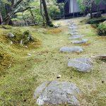 chemin temple des mousses